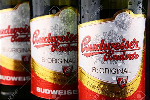 RTLS Brews Up Benefits for Historic Czech Republic Beer